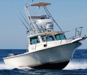 dana point sportfishing