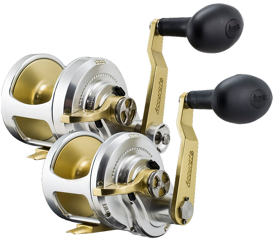 Accurate fishing reels home of small reels big fish for Accurate fishing reels
