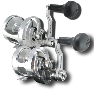 bx2 support | accurate fishing reels, Fishing Reels