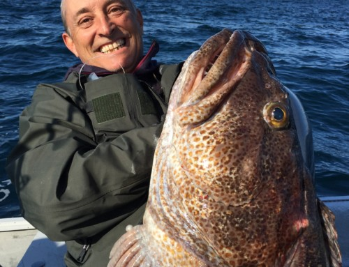 Small reel big fish sr 6 catch proves it once again for Captain steve s fishing lodge
