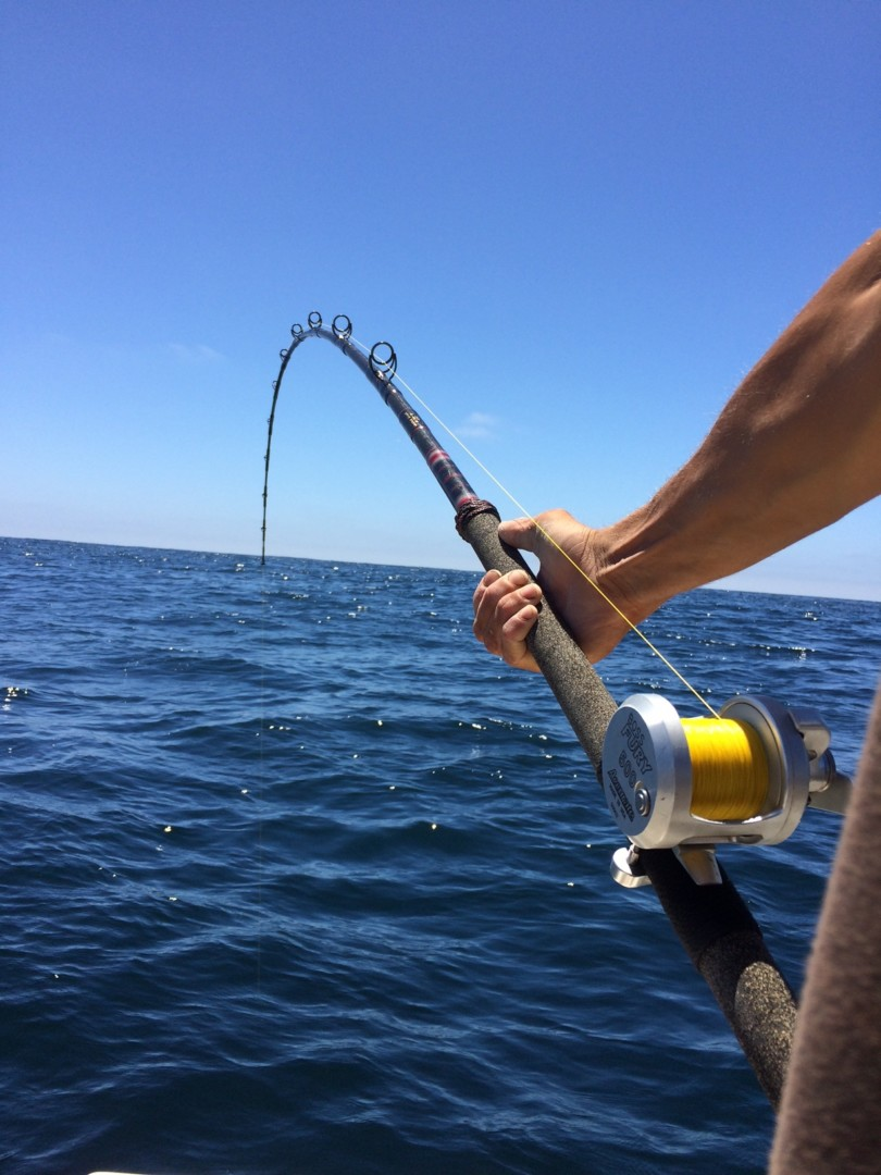 The power of a rod accurate fishing reels for Nice fishing rods