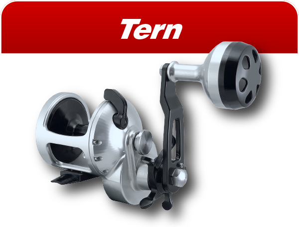 Tern saltwater fishing reels