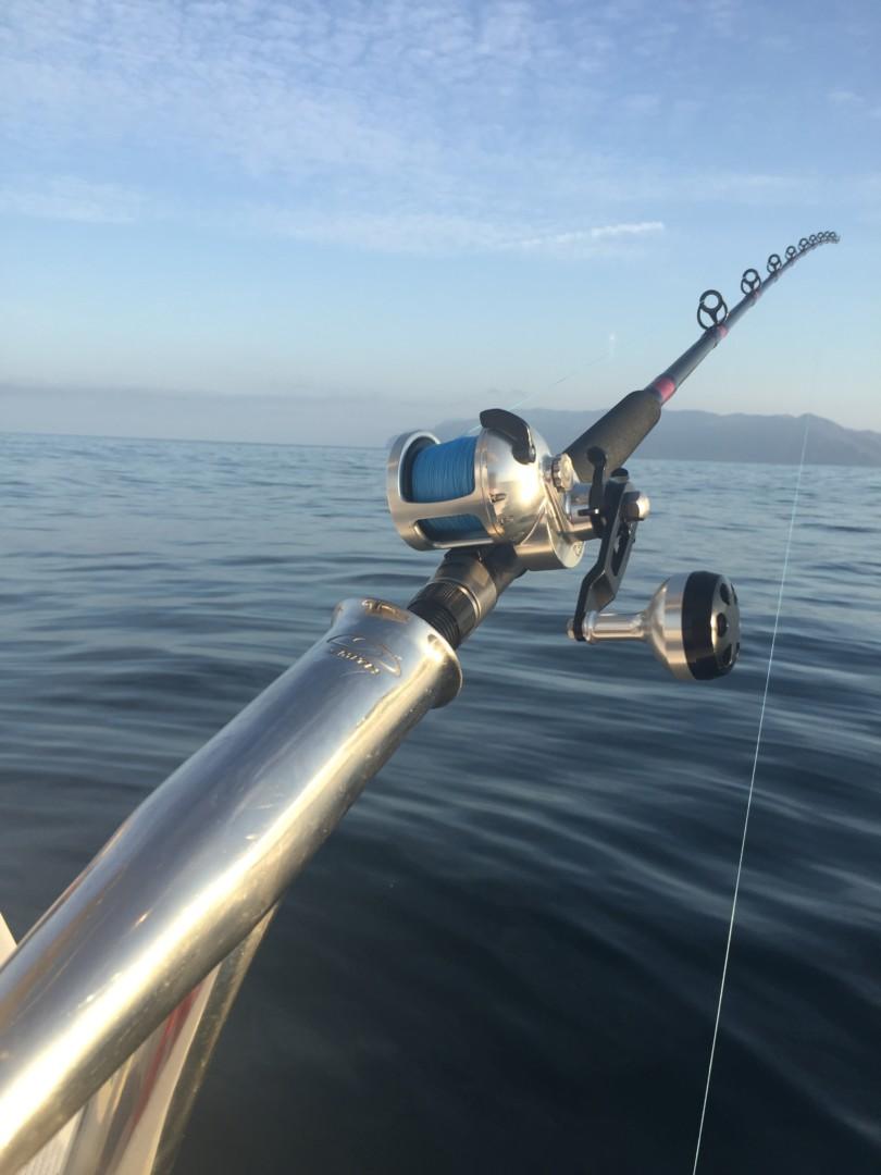 Tern – Accurate Fishing Reels